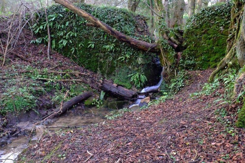 Past rushing streams