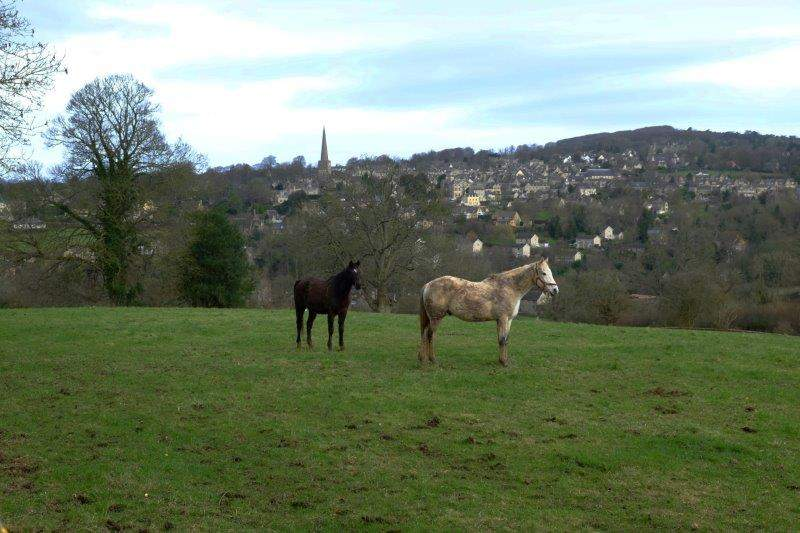 Looking across to Painswick as we go downhill