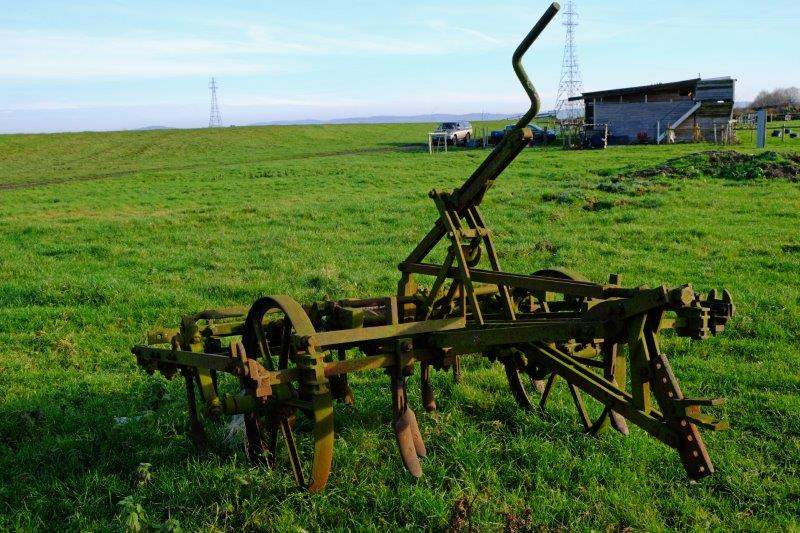 A bit of agricultural history