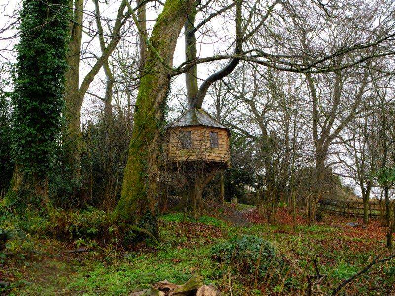 Where people live in tree houses