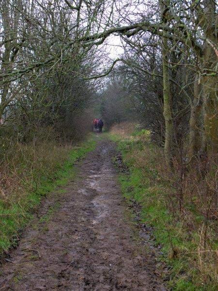 We follow a farm track