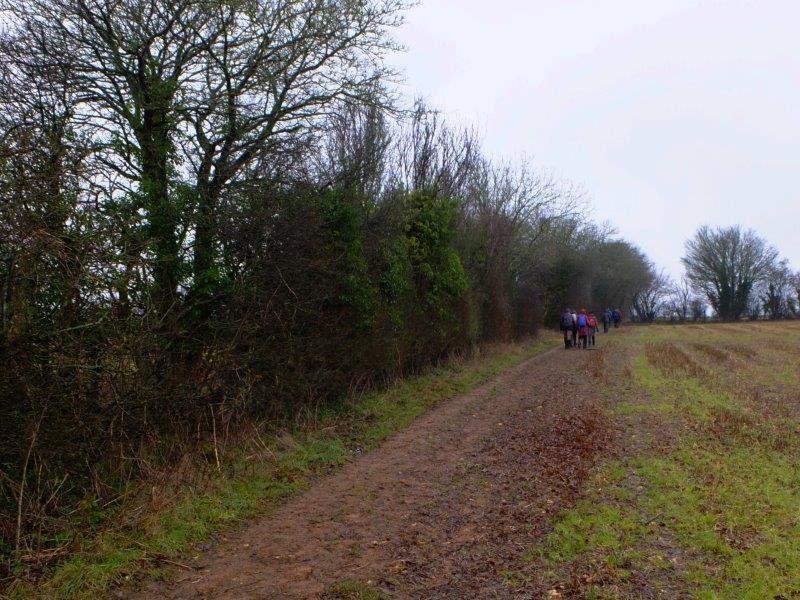 Making our way across fields