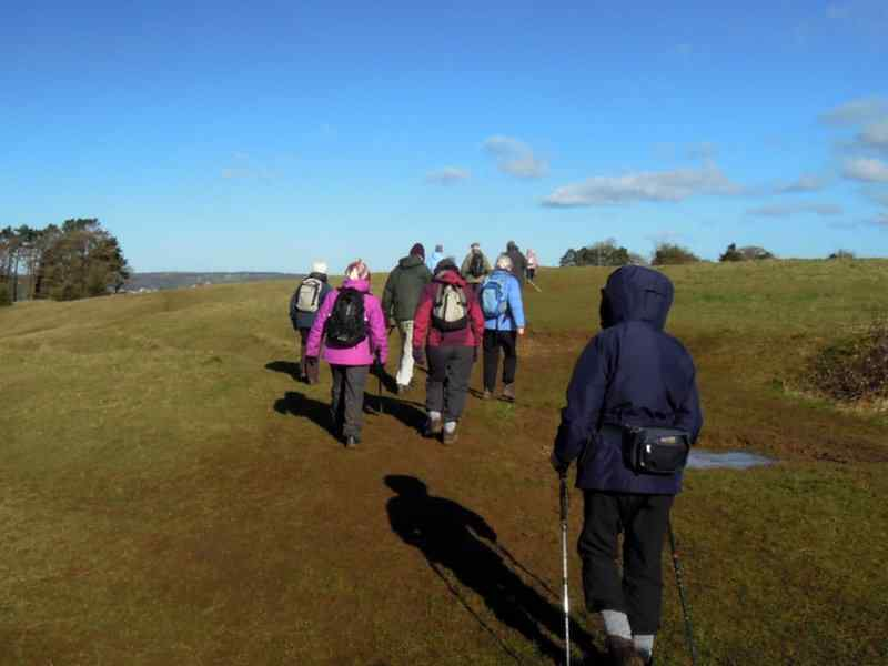 We follow in the footsteps of many dog-walkers