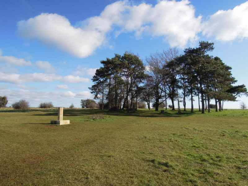 A copse of trees to commemorate Lord Baden Powell and in front a 2010 a stone to mark 100 years of the Girl Guides
