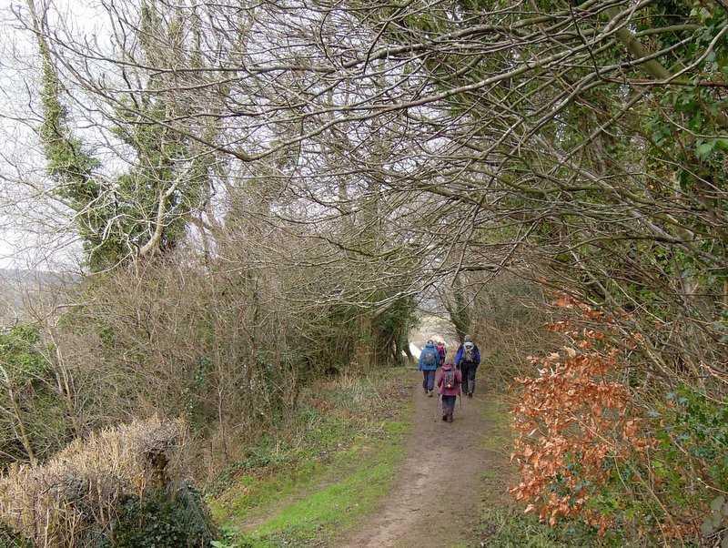 Heading towards Jack's Green