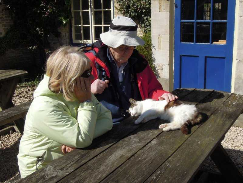 And the Cat and Custard Pot cat gets plenty of attention