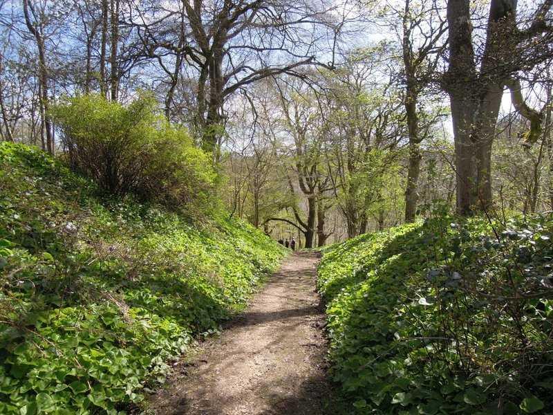 Passing through the grounds of Edgeworth Manor