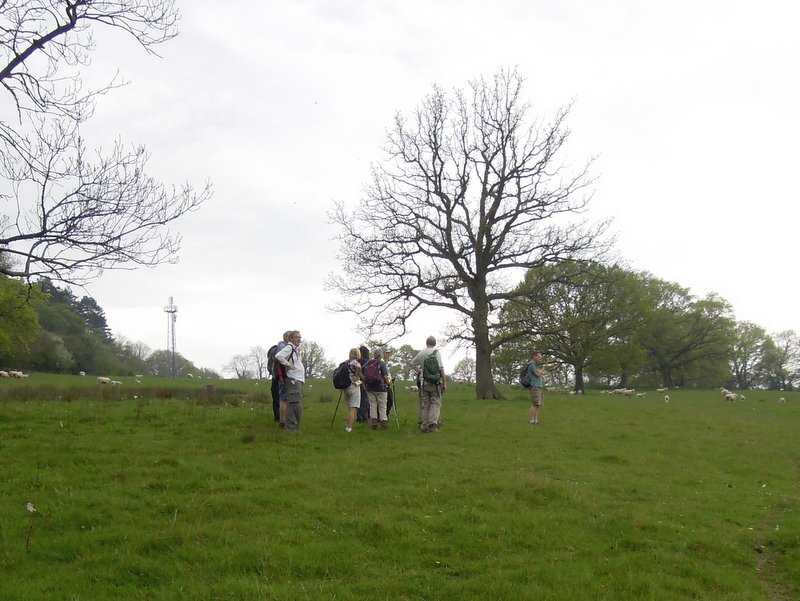We are now nearing the top of Huntley Hill