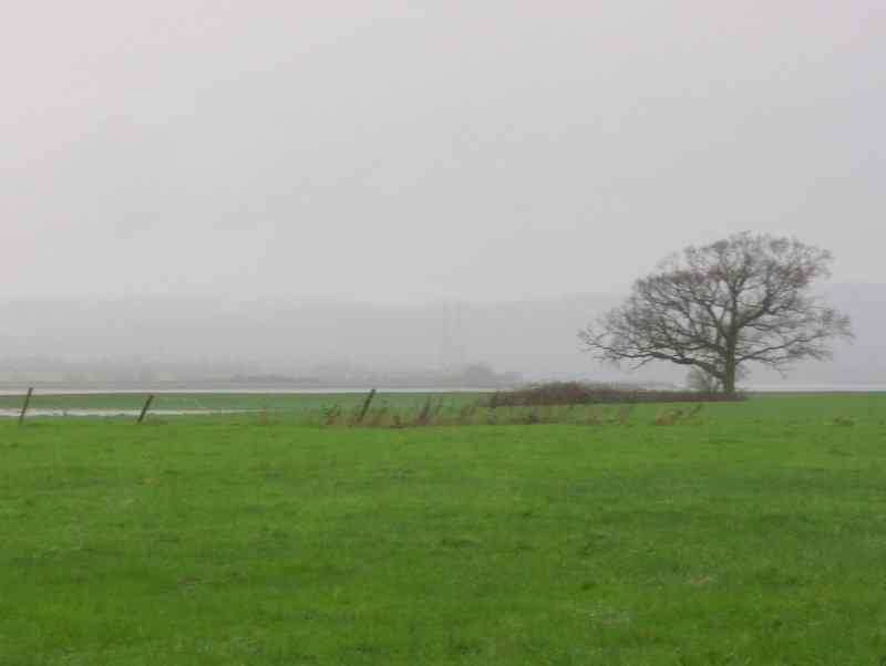 The Severn and the Forest - allegedly