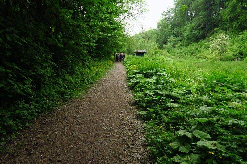 Our path takes us into the Ruskin Mill valley