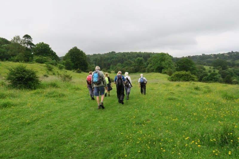 Then through Siccaridge Woods to Daneway Banks