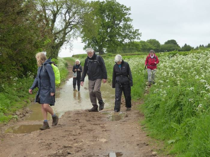 Following the track to Nailsworth, a bit wet in places.