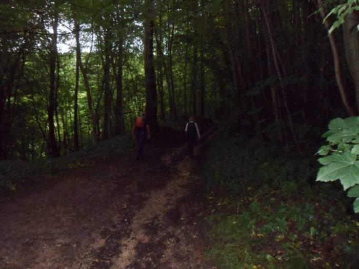 Then enter very dark woods