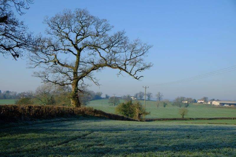It's a frosty morning