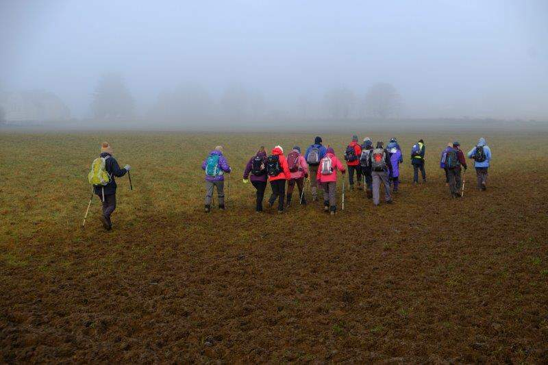 Continuing up into the mist