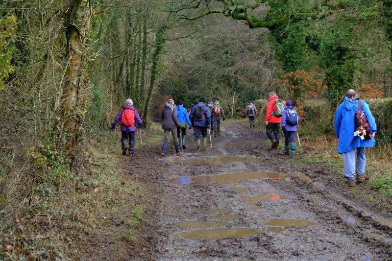 A muddy track