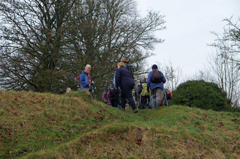 A steep bank for us to climb up