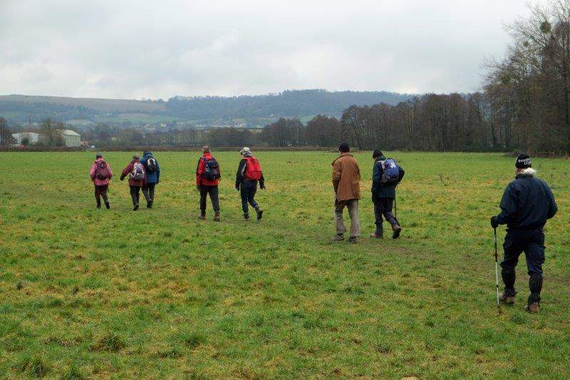 We start to head back across fields