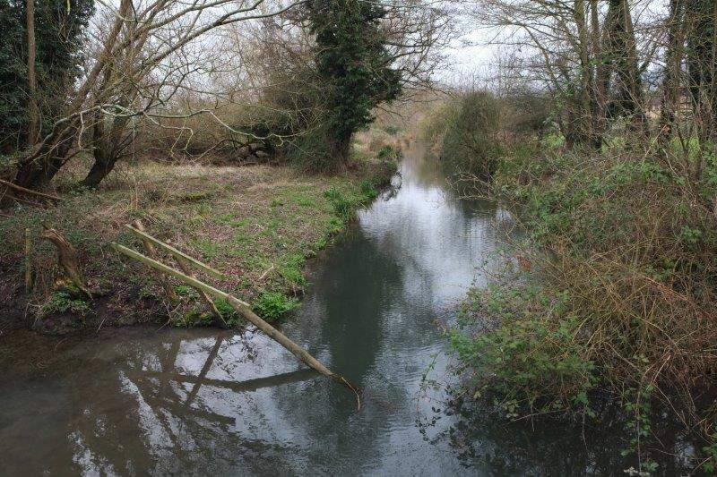 """Crossing a stream """"Should be kingfishers"""" - but we didn't see any"""