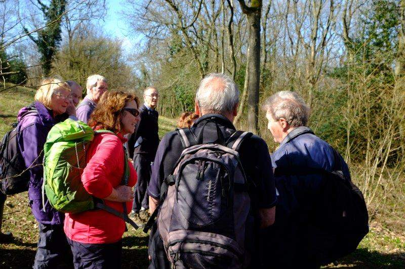 Graham tells us about the lime trees in Lineover (meaning limes) Woods