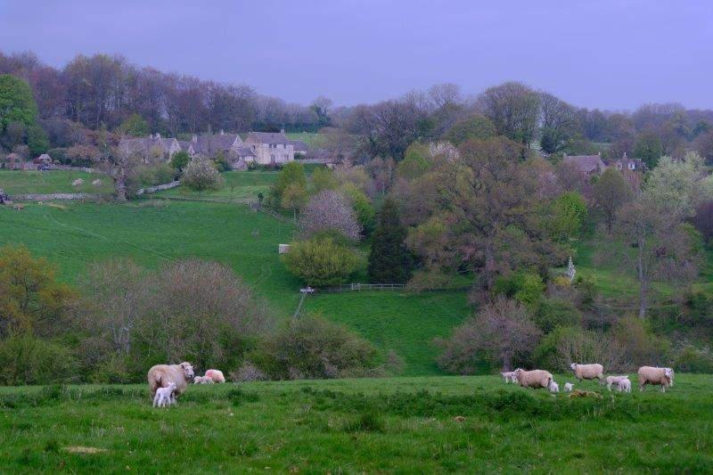 More views across the valley
