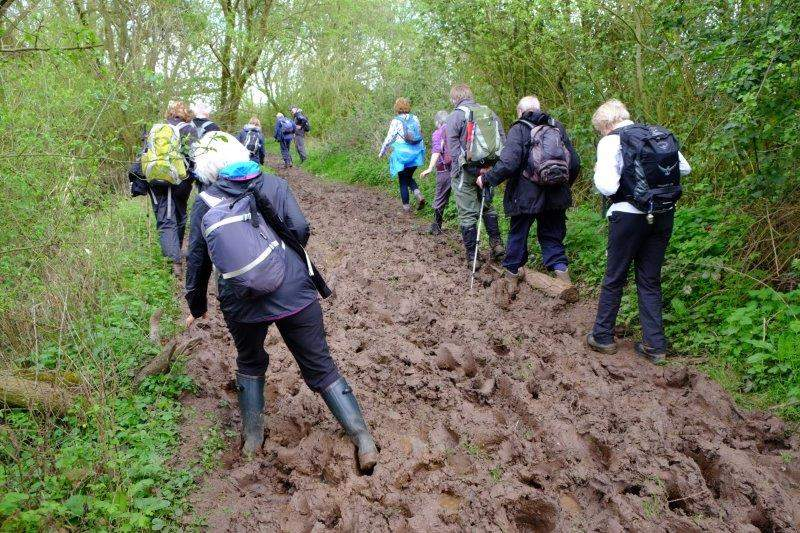 Followed by a muddy path