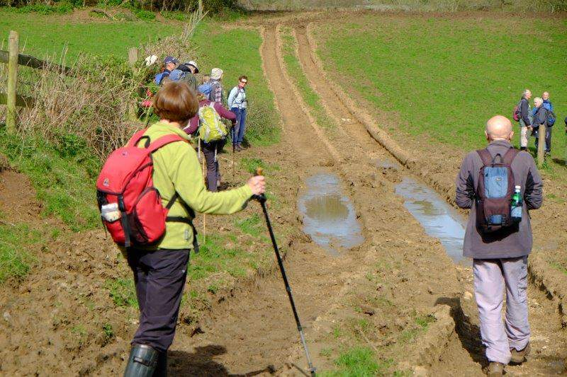 We cross the Cotswold Way - looking a bit drier than a couple of weeks ago