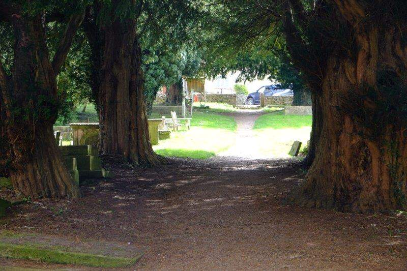 With its ancient yew trees