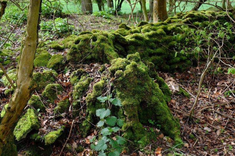 Stone wall overgrown with moss