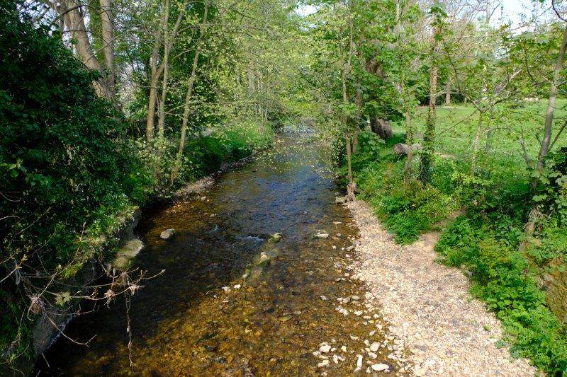 The Byes - running either side of the River