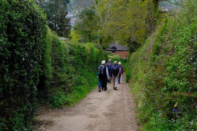 Continuing along a narrow lane