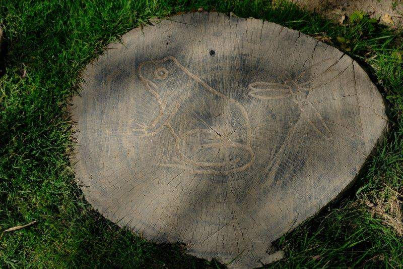 Passing some old tree stumps with a variety of carvings