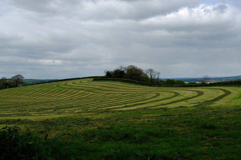 Farmers have been making patterns in their fields