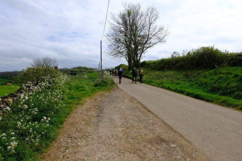 Now a short road walk