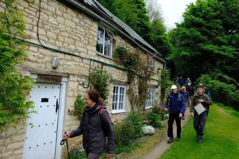 Through a cottage garden