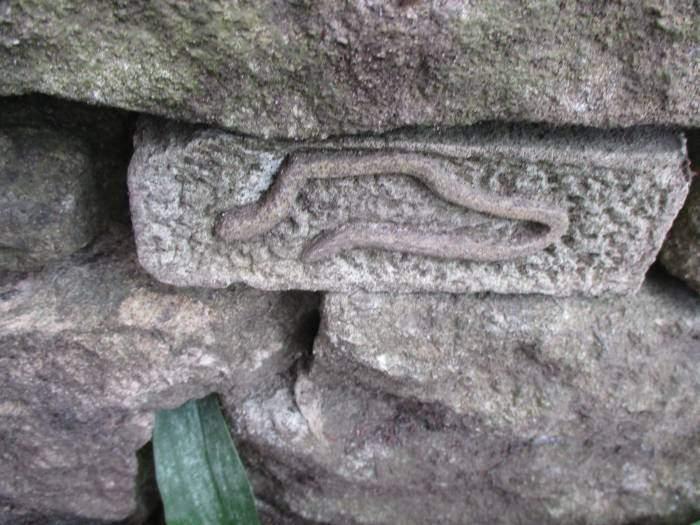 Snake/worm