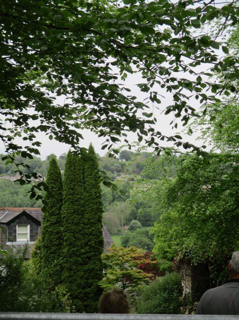 A nice garden view