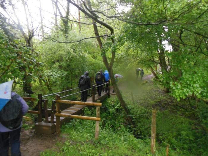 It's still raining as we cross the stream