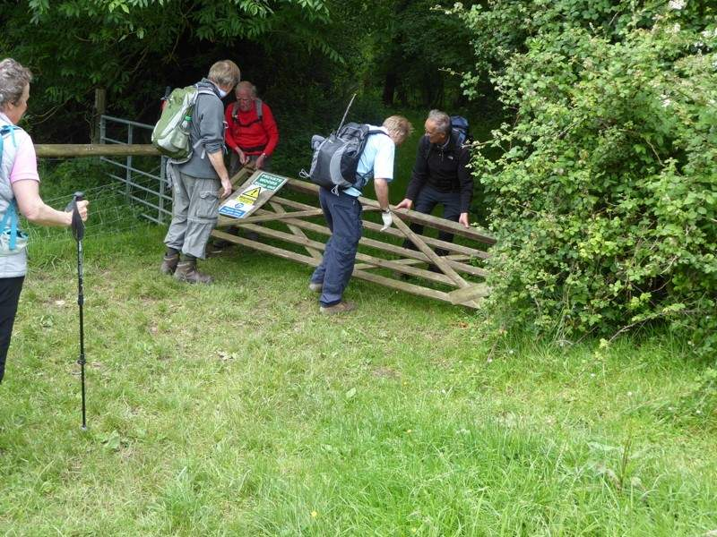 John's second disaster - he opens a gate which falls apart and which we tie up with string. (His third is No Cream in the Plough at the end)