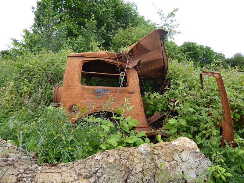 There's a bramble growing out of the petrol tank