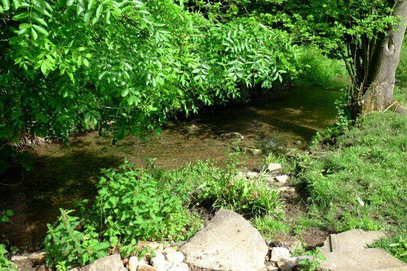 Along the stream - or River Isbourne as the locals prefer to call it