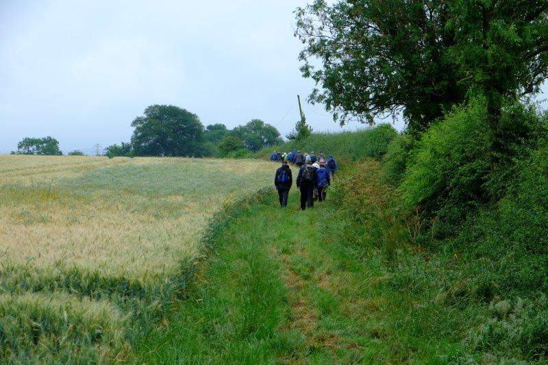 Then round the edge of a field