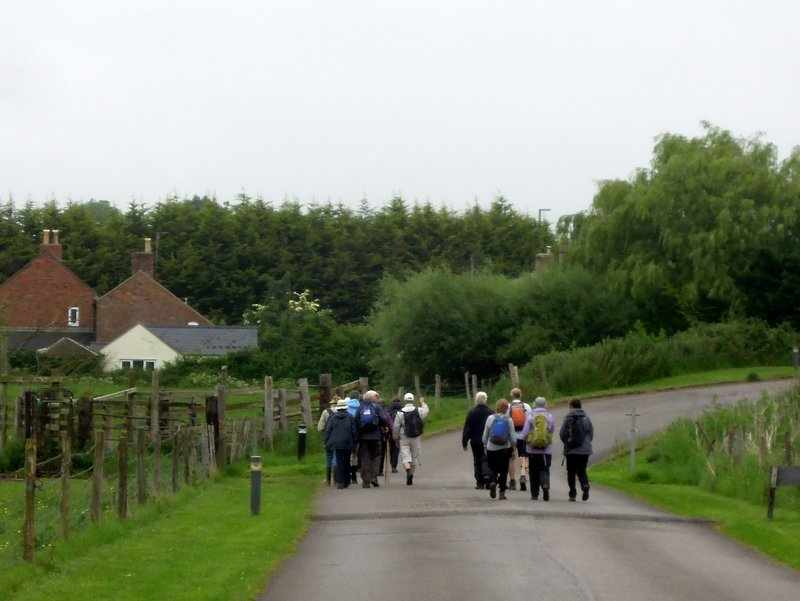 We set off along the drive