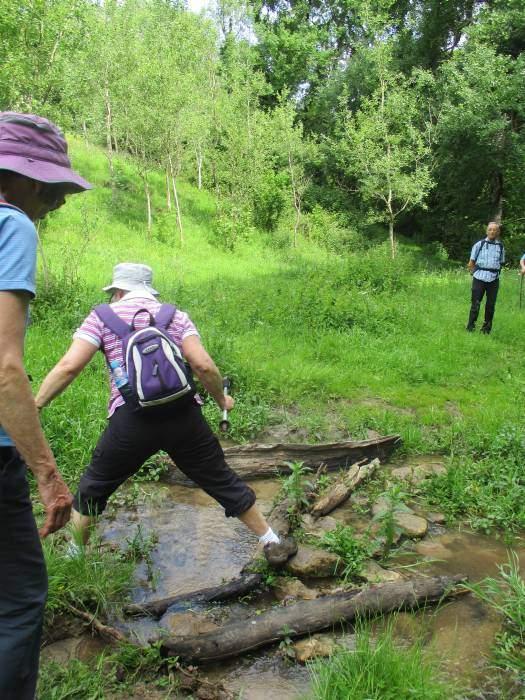 A tricky stream to cross