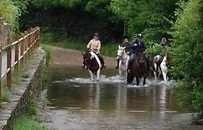 Horses crossing Brook End Ford