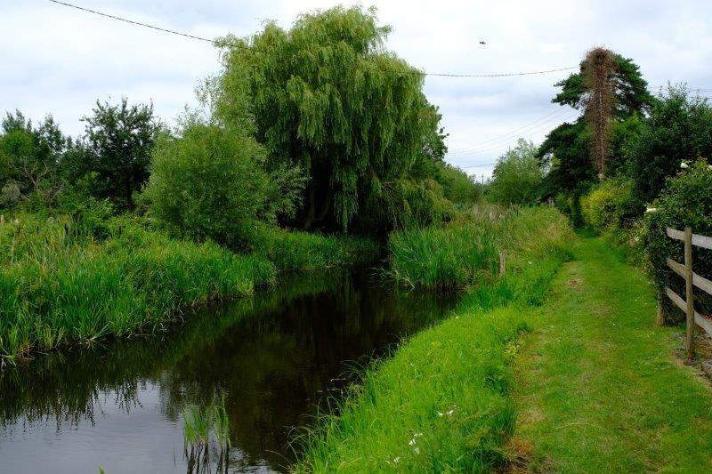 A peaceful waterside setting