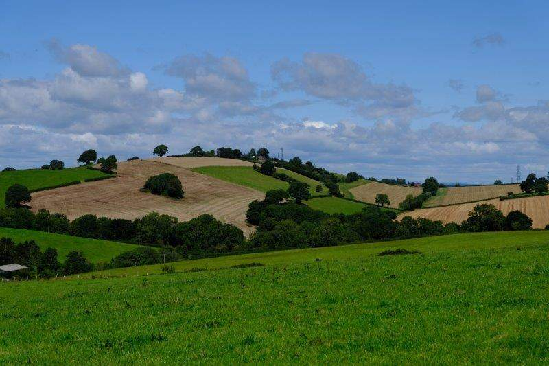 And more rolling countryside