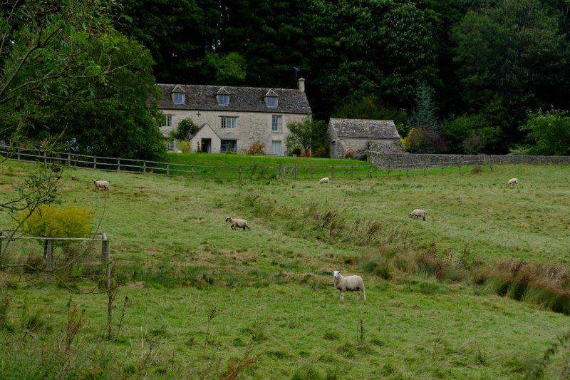 Looking across to the farm