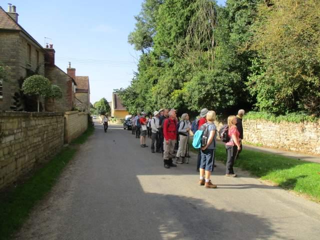 We head through Overbury and spot a plum tree
