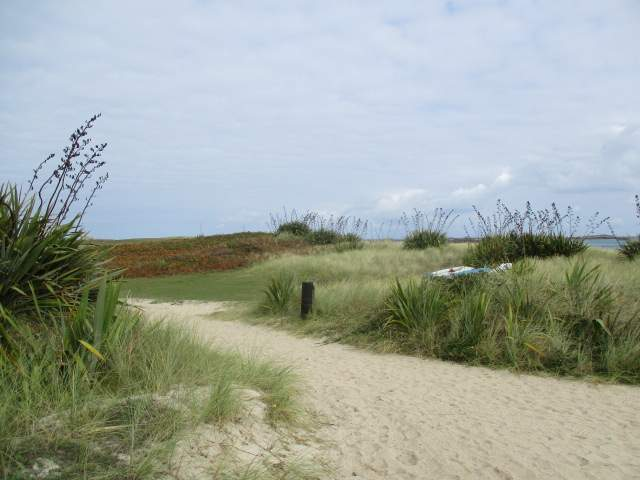 A paradise of white sand, blue sea and grassy dunes